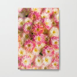 Pink and Yellow Flower Pattern (Color) Metal Print