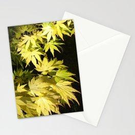 Acer Palmatum Stationery Cards
