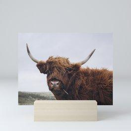 Scottish Highlander | Dutch dunes | Nature photography print | Landscape wall art Art print Mini Art Print