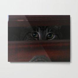 Peering Loaf Metal Print