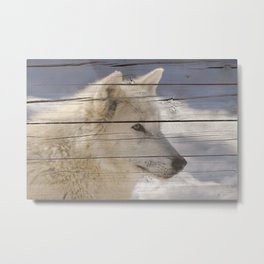 Aries the White Wolf Portrait on Faux Weathered Wood Texture Metal Print