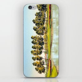 Sawgrass TPC Golf Course 17th Hole iPhone Skin