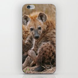 Young hyenas, Africa wildlife iPhone Skin
