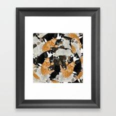 Cat Print Framed Art Print