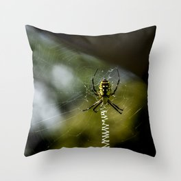 Black and Yellow Garden Spider in Web Throw Pillow