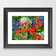Poppy Garden Framed Art Print