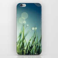 grass iPhone & iPod Skins featuring Grass  by Koka Koala