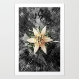 BW flower Art Print