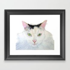 Sierra the Cat Framed Art Print