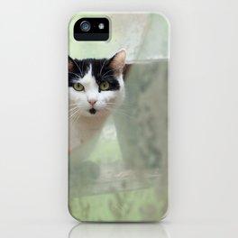 Peek-a-Boo View iPhone Case