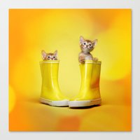 kittens Canvas Prints featuring KITTENS by I Love Decor