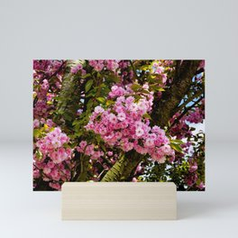Flower explosion Mini Art Print