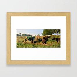 Deutz D 6807 Framed Art Print