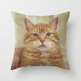 Cattitude Is Everything. Throw Pillow