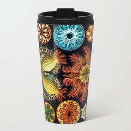 Sea Squirts (Ascidiacea) by Ernst Haeckel Travel Mug