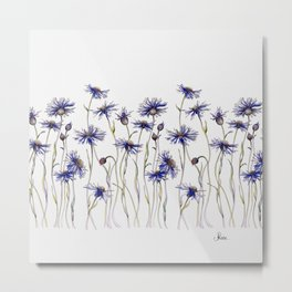 Blue Cornflowers, Illustration Metal Print