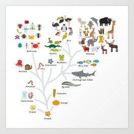 Evolution in biology, scheme evolution of animals on white. children's education back to scool Art Print