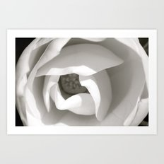 Colorless Beauty Art Print