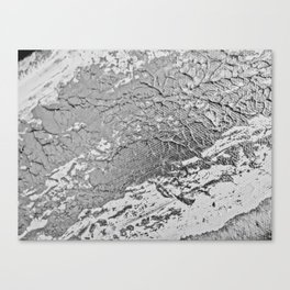 SLICK | Silver monochrome abstract acrylic art by Natalie Burnett Art Canvas Print