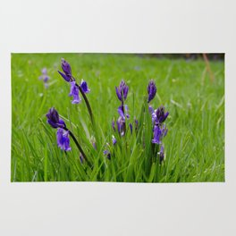 Bluebells in the grass Rug