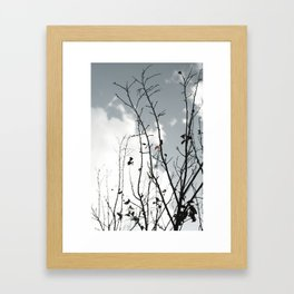 The Last To Fall Framed Art Print