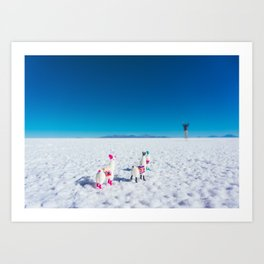 Llamas looking into the distance on the Salt Flats, Bolivia Art Print
