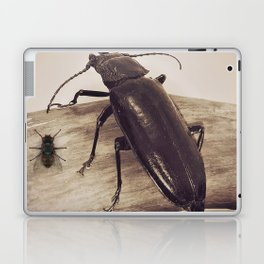 Viewpoints Laptop & iPad Skin