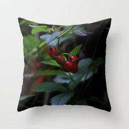 buggy on a berry Throw Pillow