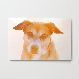 Dog Gone It Metal Print