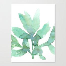 peony leaf Canvas Print