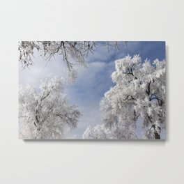 In the Frosty Air Metal Print