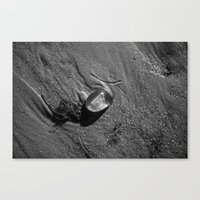 jelly fish Canvas Prints featuring Jelly Fish by Paul Vayanos