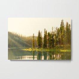 Sun Stream Through the Trees Metal Print