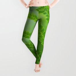 Fabulous Fern Leggings