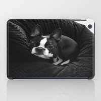 boston terrier iPad Cases featuring Boston Terrier. by agroeneveld33