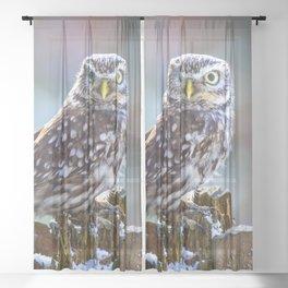 Little Owl Sheer Curtain
