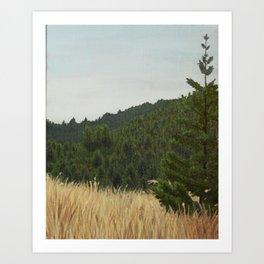 Mt. Tamalpais Art Print
