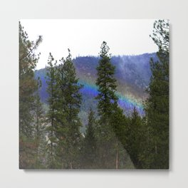 Over the rainbow through the forest... Metal Print