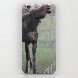 Missy willows evening iPhone Skin