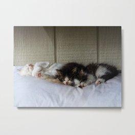 Sleeping Beauties Metal Print