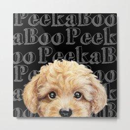 Peek A Boo-Toy poodle-Beige yellow tone Metal Print