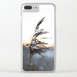 Cold sunset Clear iPhone Case