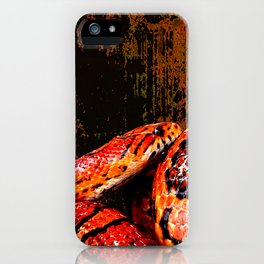 Grunge Coiled Corn Snake iPhone Case
