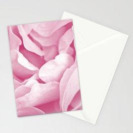 Pink Rose Petals Macro Stationery Cards
