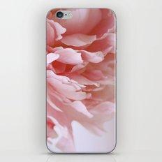 Peony Pink iPhone & iPod Skin