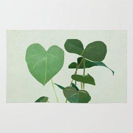 Plant 3 Rug