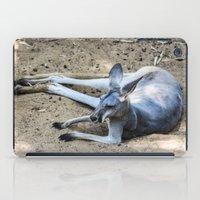 kangaroo iPad Cases featuring Kangaroo by Veronika