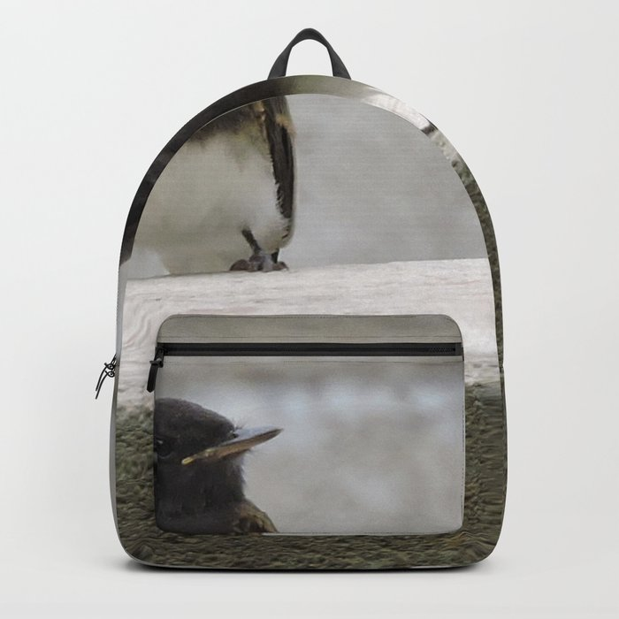 Young Black Phoebes Backpack
