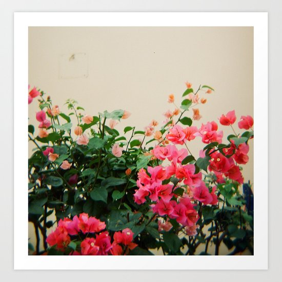 Pink on Holga Art Print
