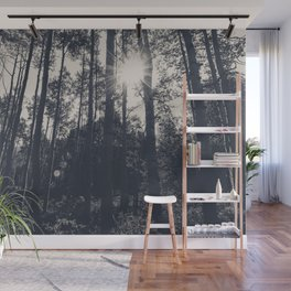 Aspen Forest in Black and White Photography Print Wall Mural